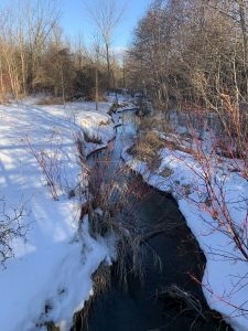 Part of Rouge River Trail