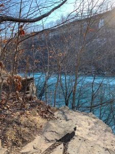 Niagara Glen Trails and River