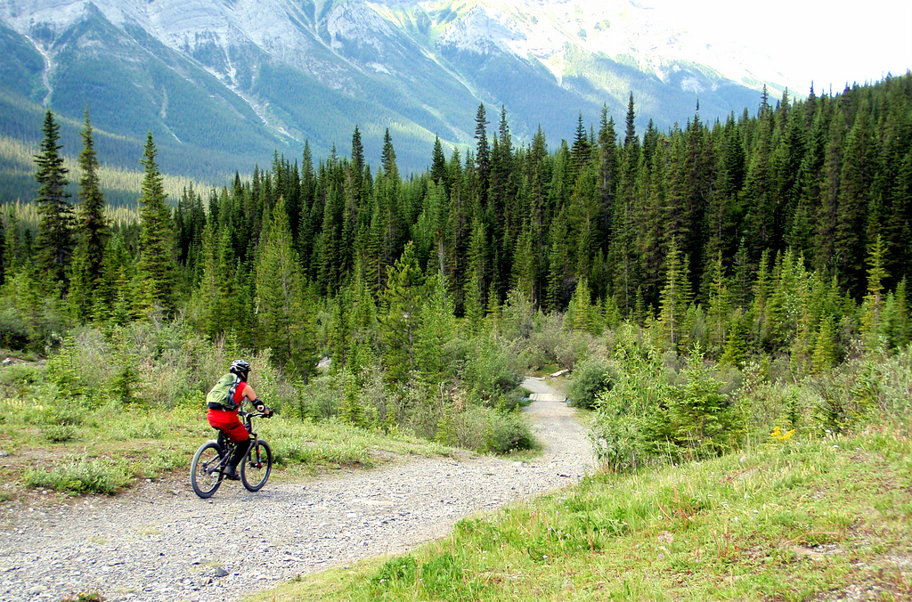 Goat Creek is largely downhill to Banff for 25kms...=-)