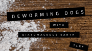 Deworming Dogs with Diatomaceous Earth