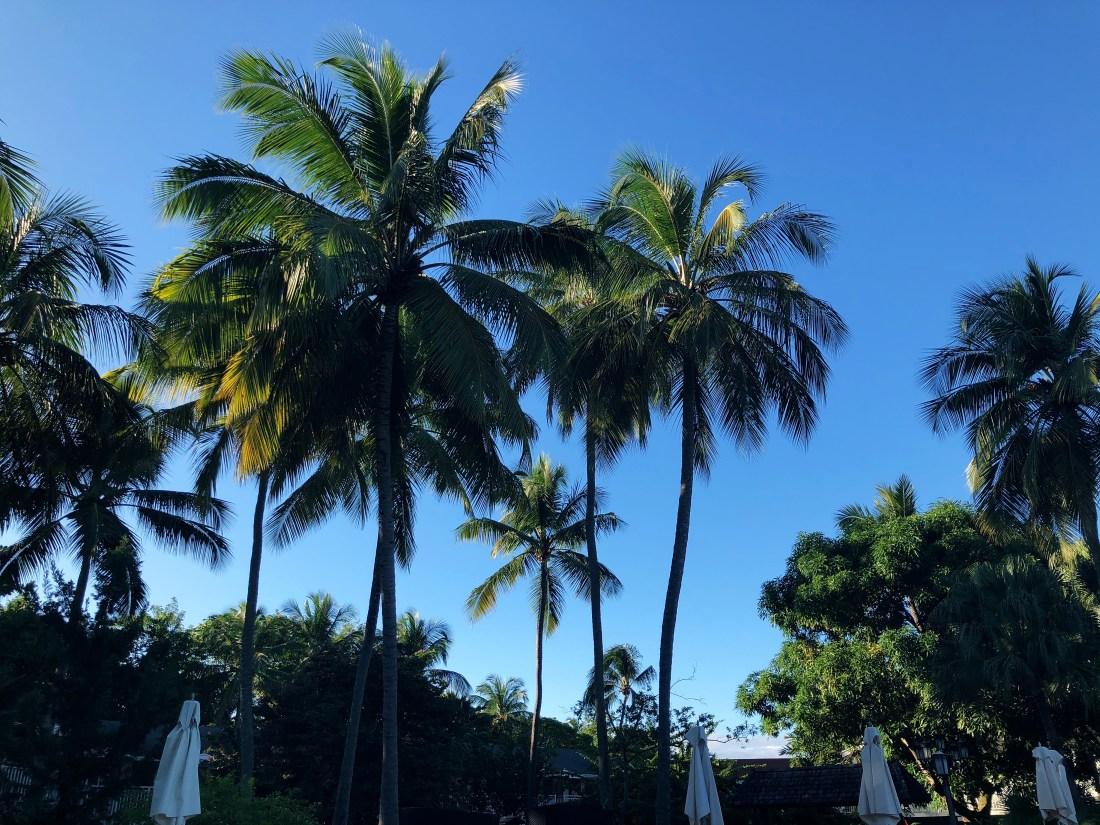 Sandals Halcyon Beach Resort Saint Lucia
