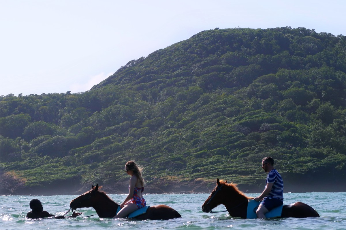 Horse & Swim With Island Routes Saint Lucia - Travel Blogger