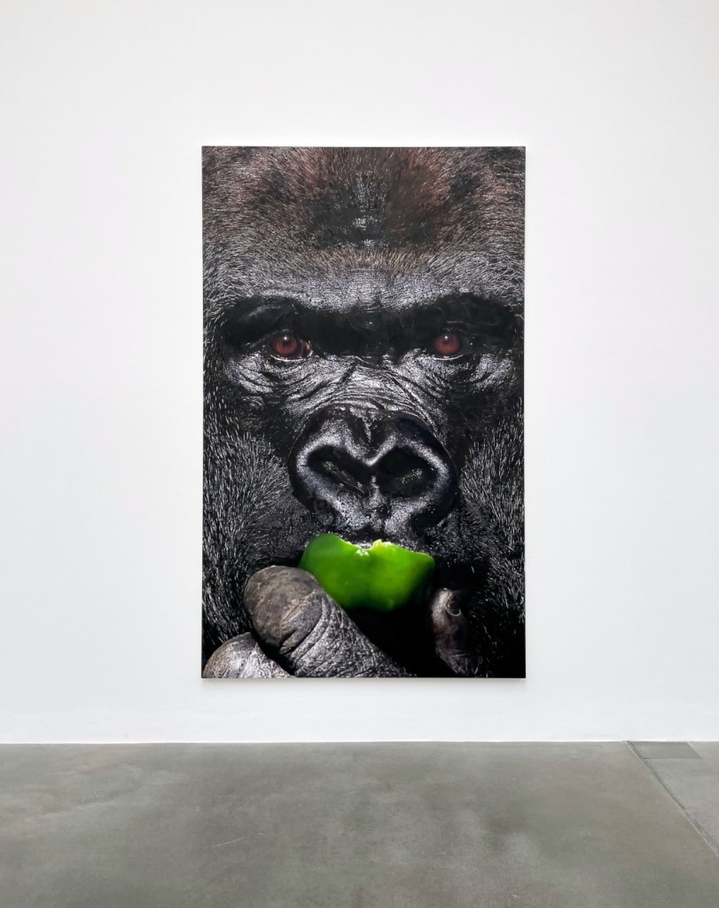 Damien Hirst Gorilla Eats Green Pepper