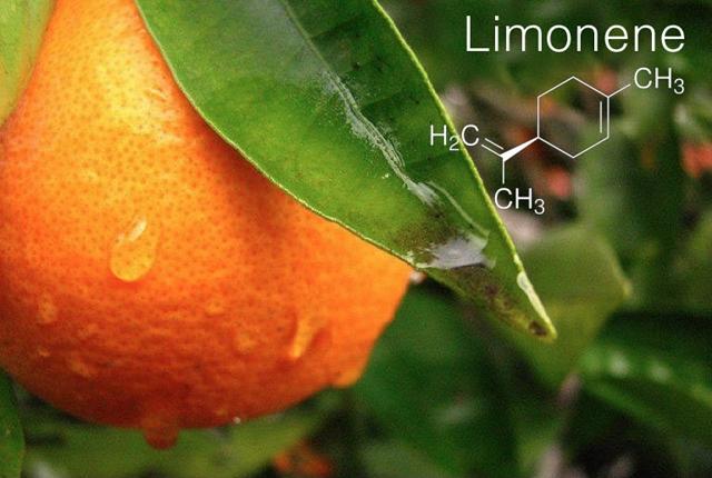 Terpene Profile: Limonene, Source: Original compilation and http://a.scpr.org/i/8cfc04435f1702283d9cc5f72f6bbc88/33805-eight.jpg