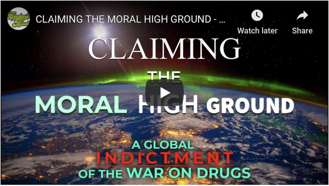 photo of Video reclaims moral high ground against Drug War image