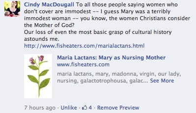 Mary immodest cindy macdougal comment