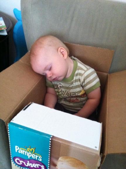 sleeping in a diaper box