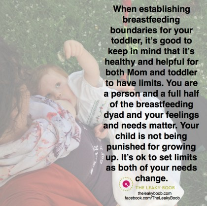 Breastfeeding boundaries for toddlers