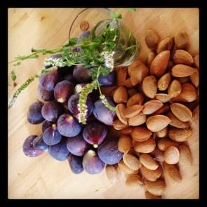 CasaCallistemon - figs and almonds