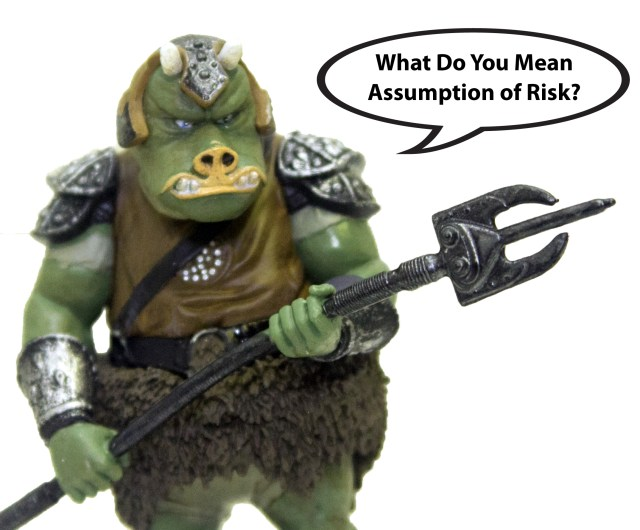 Gamorrean_AssumptionofRisk_3051