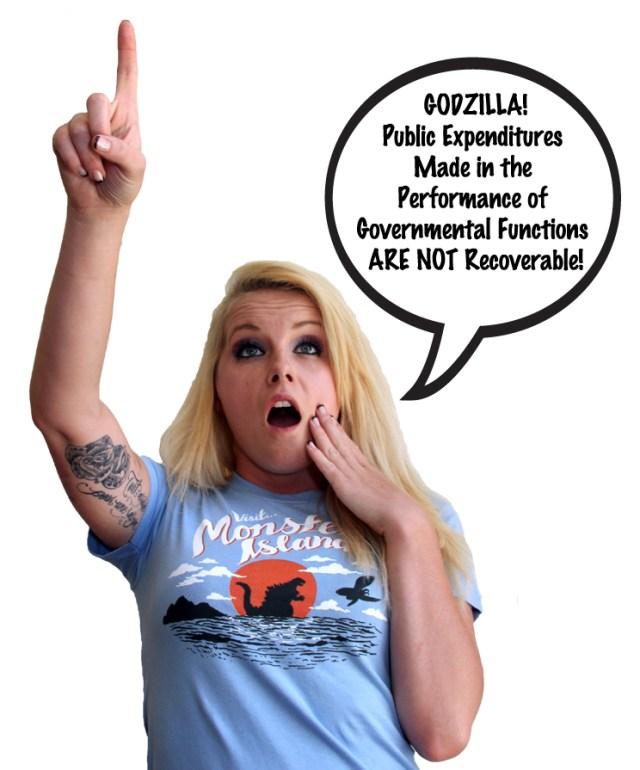 Godzilla_PublicExpenditures_2434