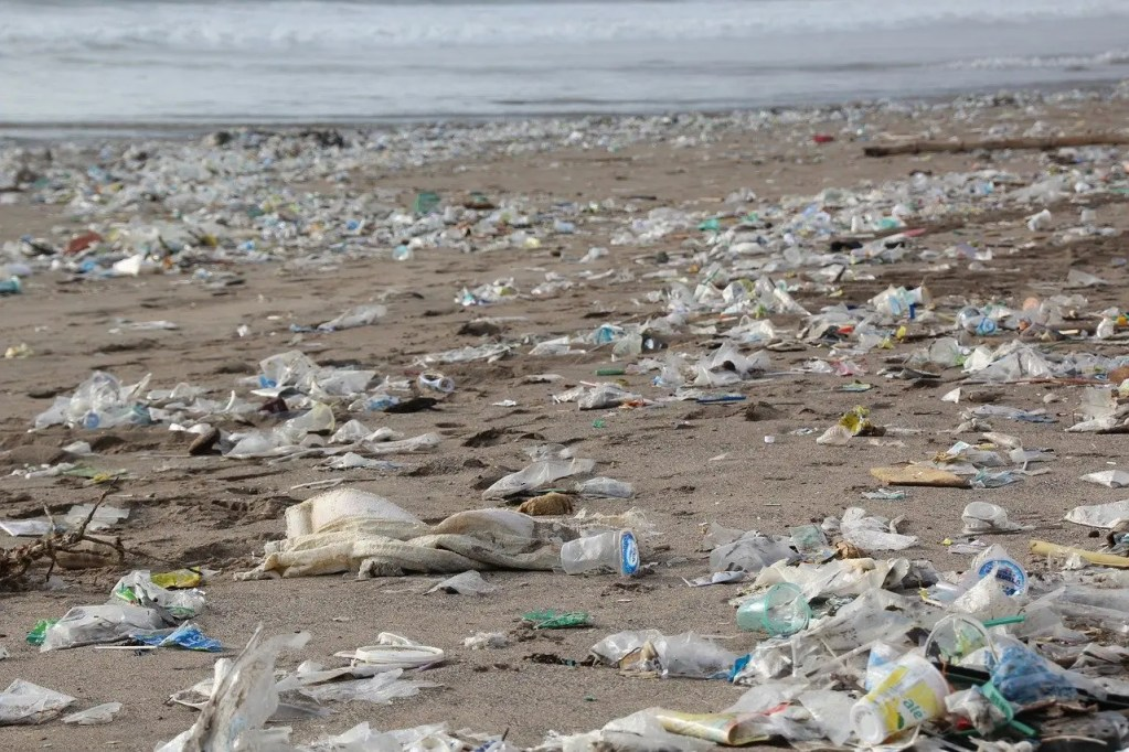 What are the problems with biodegradable plastics