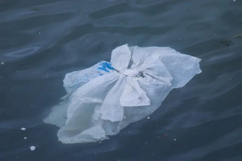 What are compostable bags made of