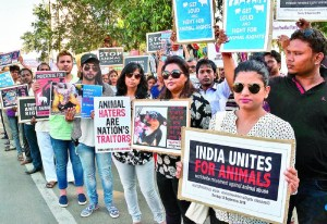 Animal Rights protest in India.