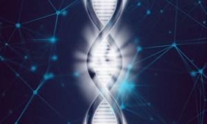 Human Genome Project (HGP)