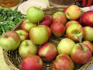 apples-300x22511