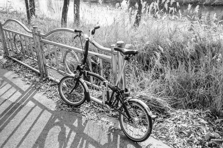 Leica M7, Summilux-M 1:2/35 ASPH  | Kodak TMAX 400