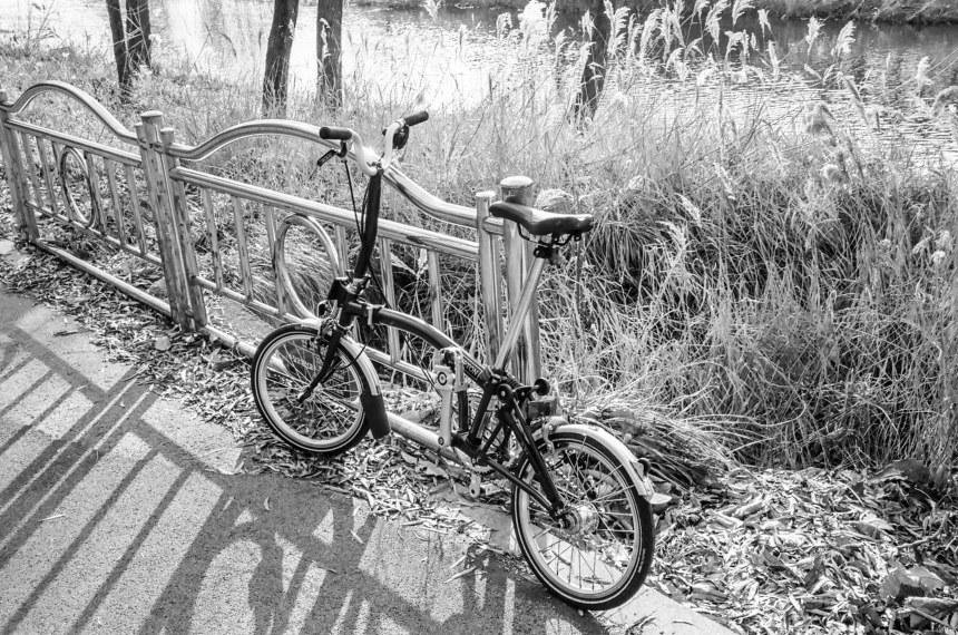 Leica M7, Summicron-M 1:2/35 ASPH | Kodak TMAX 400 Film