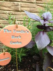 The Foodie's Herb Garden