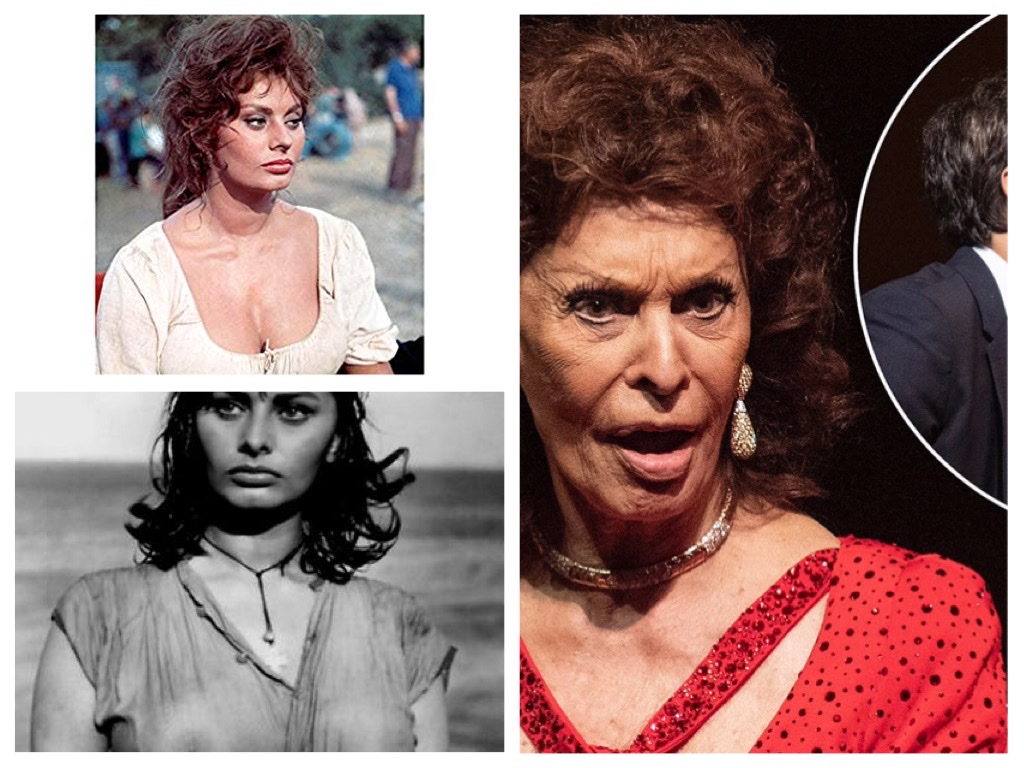 Should Sophia Loren Now 85 Disappear And Let Us Remember Her As She Was The Life Times Of Hollywood