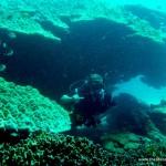 Diving with Sub Aqua Phuket