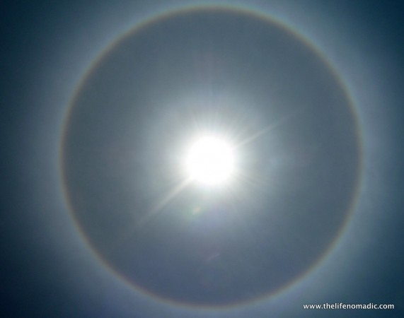 Sun Dog in Pedro Ruiz!