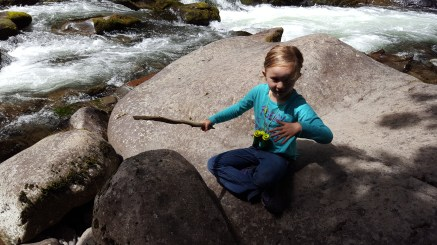 Old Salmon River Trail 2016-7-1 (104 of 158)