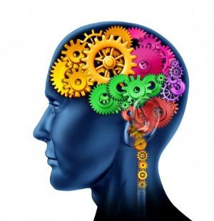 brain turning wheels