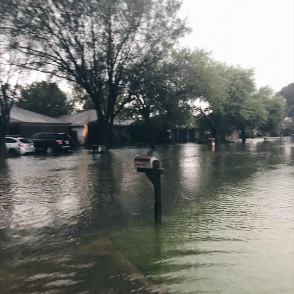 Hurricane Harvey: Life Update