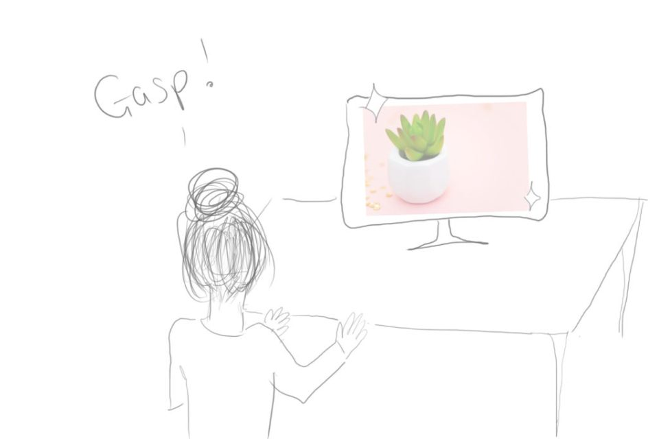 Cartoon image of a person gasping as they look at a picture of a succulent on their computer