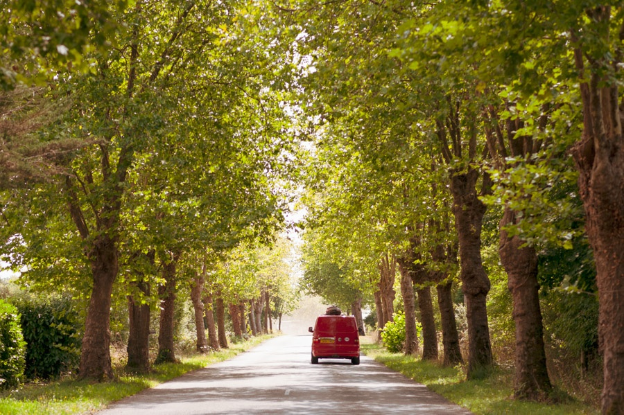 image of a vw campervan driving down a long tree lined road