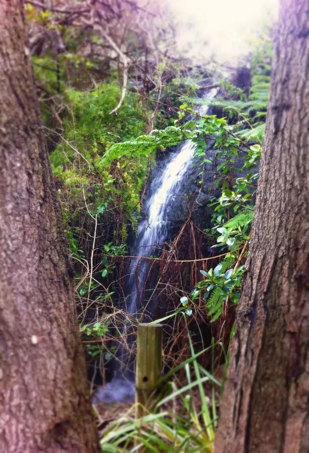 freshwater  waterfall - om healing australia