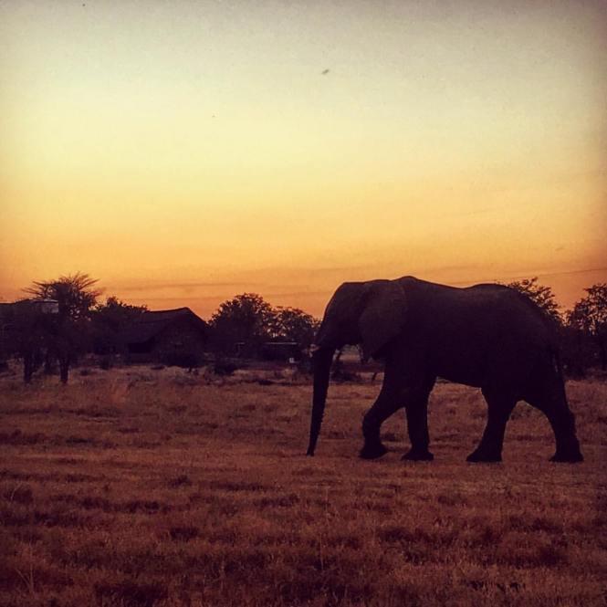 Travel Zimbabwe