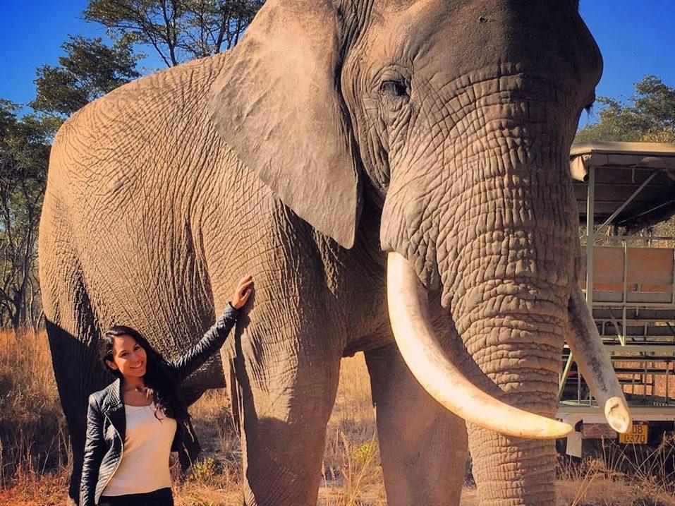 IMIRE Rhino & Wildlife Conservation: the best safari in Zimbabwe
