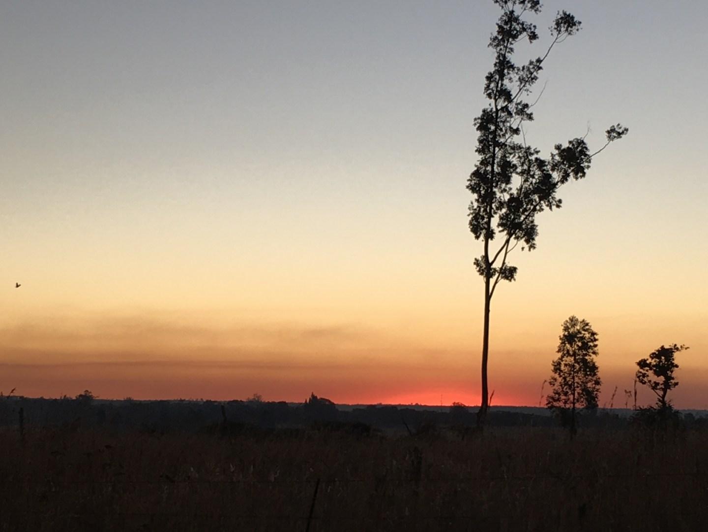 Africa - Zimbabwe - Imire Game Park - landscape