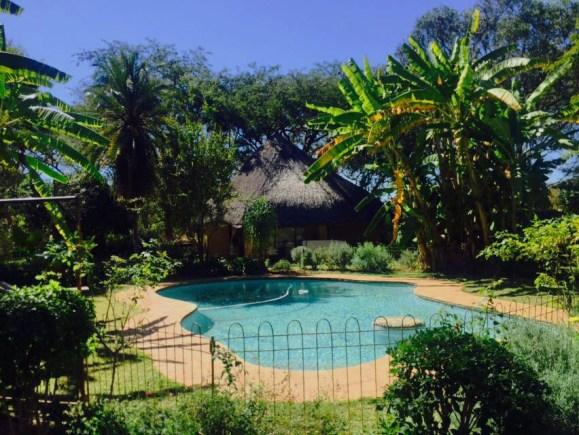 Africa - Zimbabwe - Imire Game Park - pool