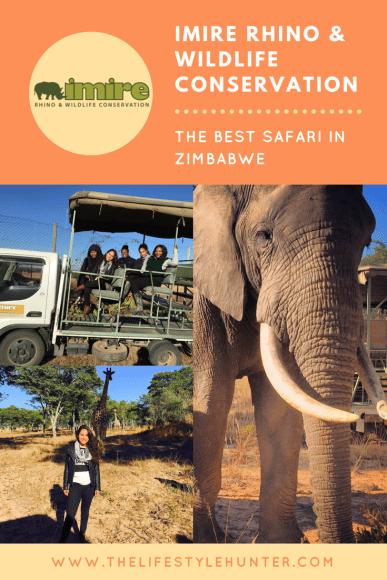 #thelifestylehunter #pilarnoriega #Travel: IMIRE, rhino, wildlife, safari, Zimbabwe, Harare, Zimbabwe Africa, africa, travel, traveling, travelling, awesome earth, holiday, wonderful place, road trip, travel blogger, travel blog, travel diary, bucketlist, backpack, backpacking, tourist, tourism, breathtaking, lifestyle, travel style, world traveler, roadtrip, adventure, live your life, world, world captures, digital nomad, wanderlust