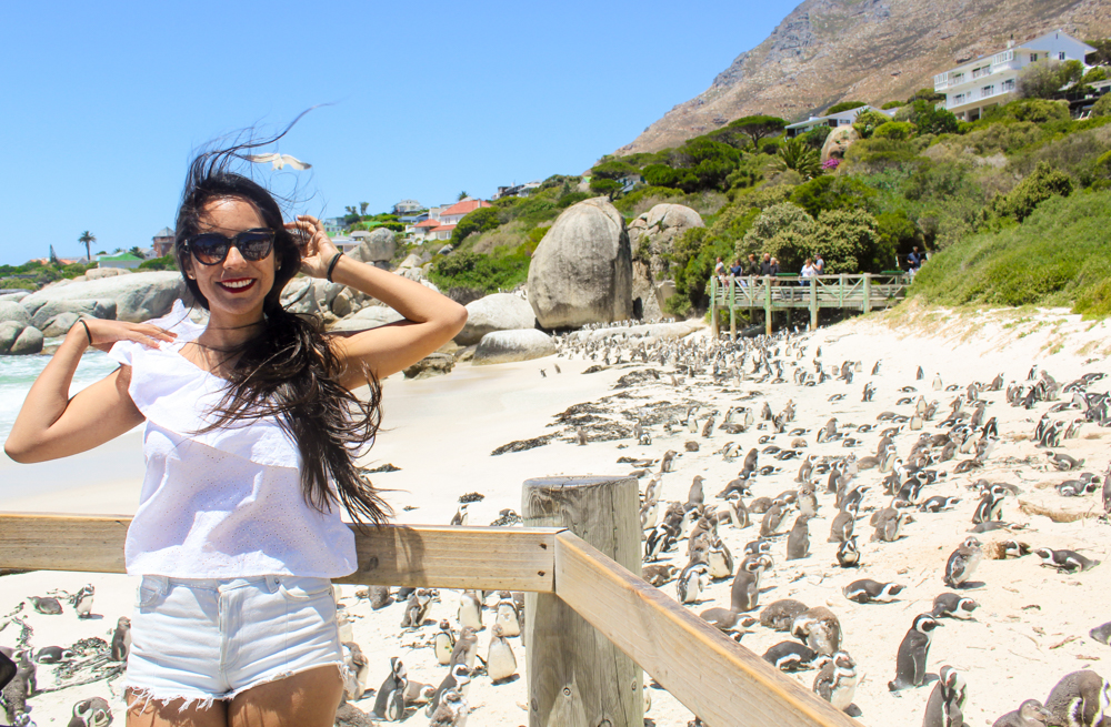 The Ultimate Cape Point Tour by Cape Xtreme: my experience discovering Cape Town
