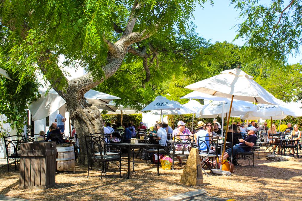 Constantia Wine Valley Cape Xtreme Tour-Cape Town-South Africa