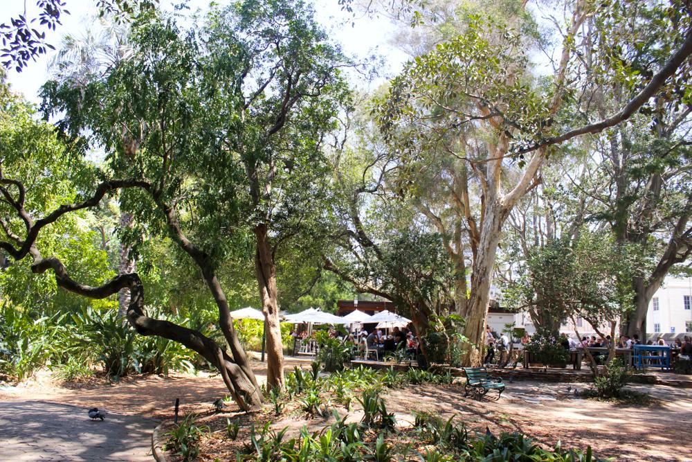 The companys garden - Cape Town - South Africa