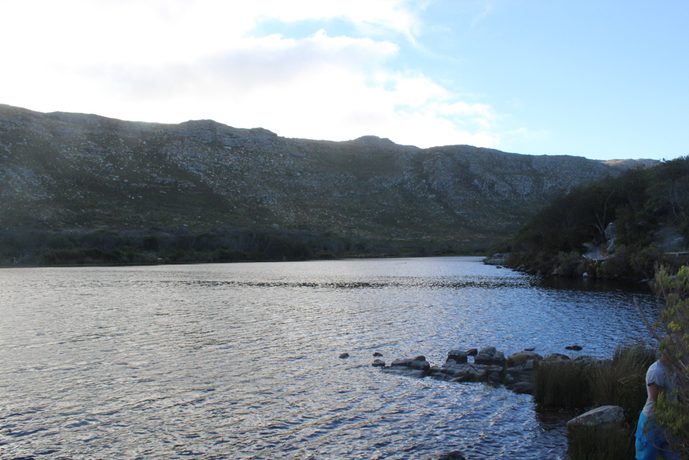 Silvermine - Cape Town - South Africa