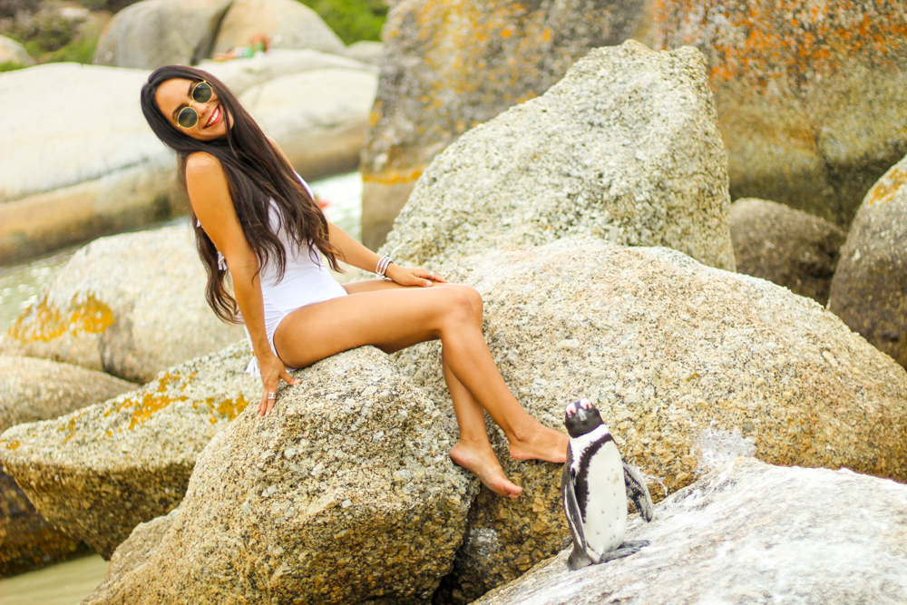 Boulders Beach: visiting the African penguins in Cape Town, South Africa