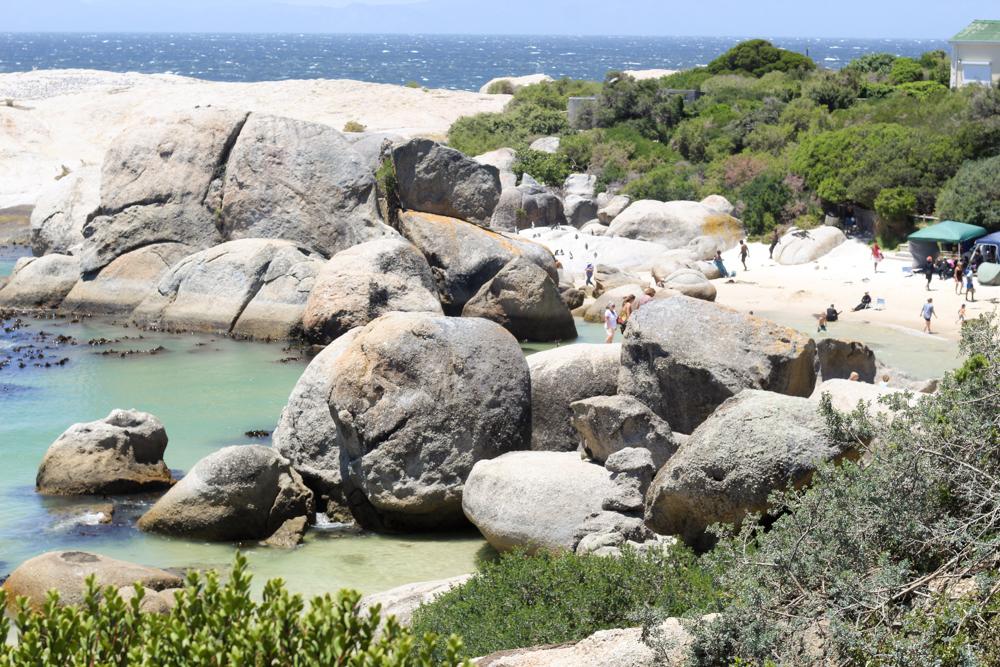 Boulders beach africa