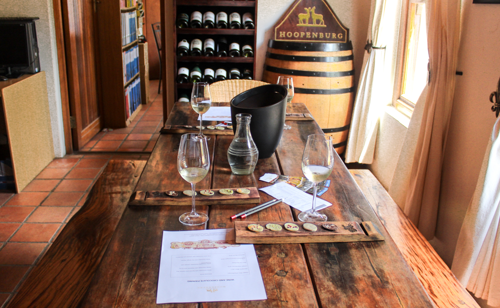 Wine Tour Wine Flies - Cape Town - South Africa
