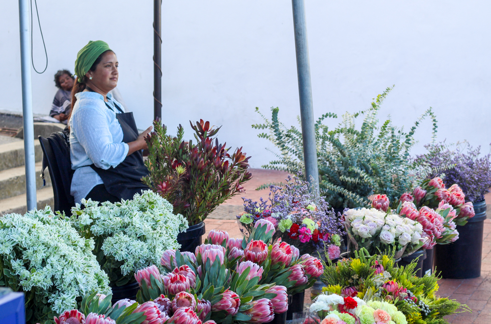 Kalk Bay - flowers - Cape Town - South Africa