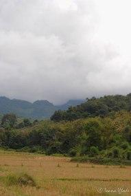 Laos-4085