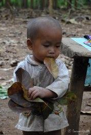 Laos-4144