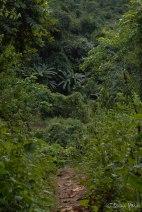 Laos-4158