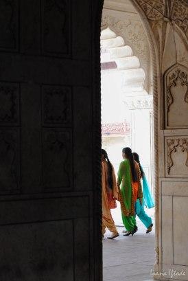 India-0565
