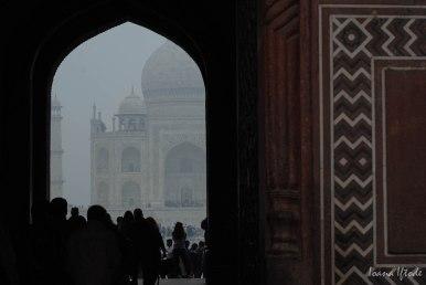India-0591